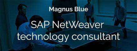 sap-netweaver-technology-consultant