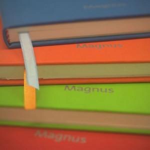 cropped-magnus-notebook.jpg