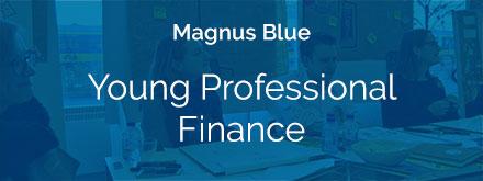 youngprofessionalfinance