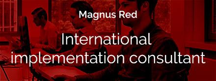 International-implementation-consultant
