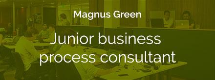 Junior-business-process-consultant