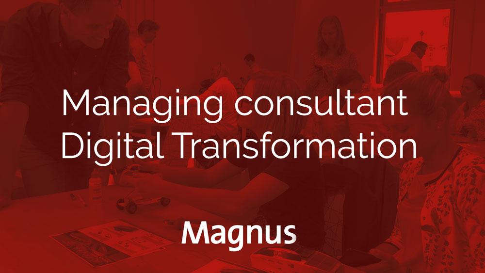 Magnus-Red-Managing-consultant-Digital-Transformation