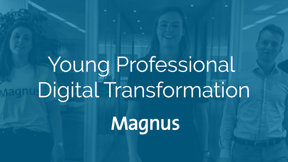 Magnus-Young-Professional-Financial-Analytics