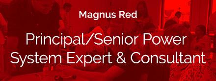 Principal-Senior-Power-System-Expert-Consultant