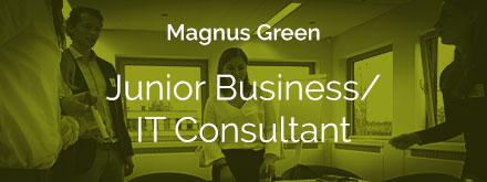 Junior-business-it-consultant