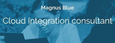 Cloud-Integration-consultant